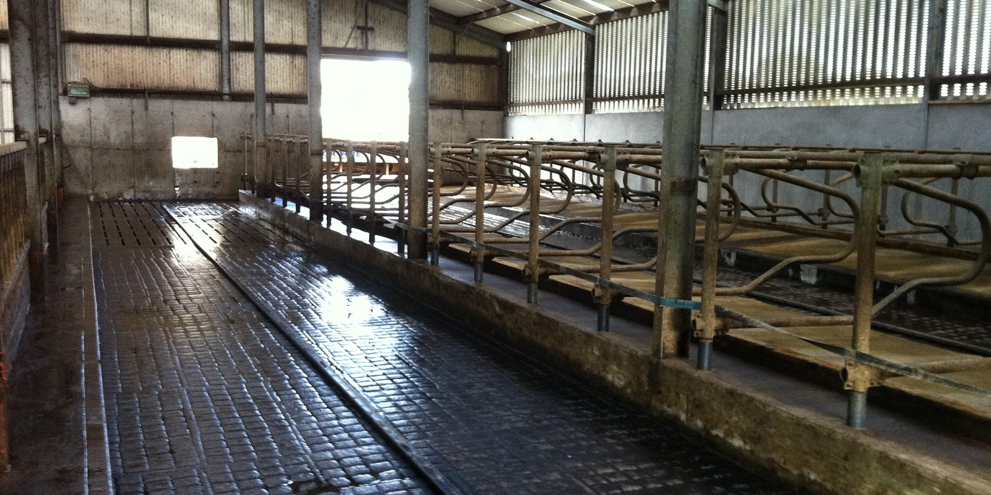 Agriculture-power-washing-contractor-for-farms-Mayo,-Galway,-Roscommon,-Sligo-Ireland